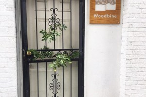 Unique Community Group in Ridgewood Offers Experimental Social Gatherings and Events