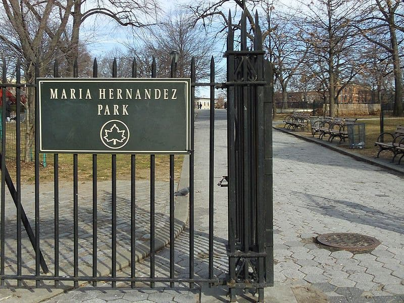 Breaking: Cops Arrested a Suspect of Shooting Near Maria Hernandez Park