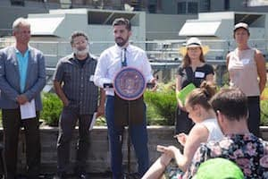 Council Member Espinal Wants Mandatory Green Roofs on New Buildings