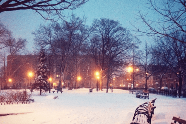 Join Your Bushwick Neighbors at Irving Square Park for Its Third Annual Winter Celebration!