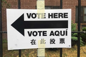 Primary Day is Upon Us! Get Out and Vote, Bushwick