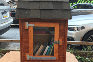 Bushwick's Little Free Libraries: Where They Are and How To Start Your Own